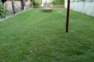 Снимка номер 1 за Озеленяване и поддържане на тревни площи