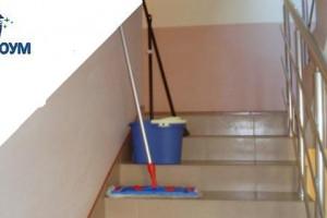 Снимка номер 1 за Почистване на входове