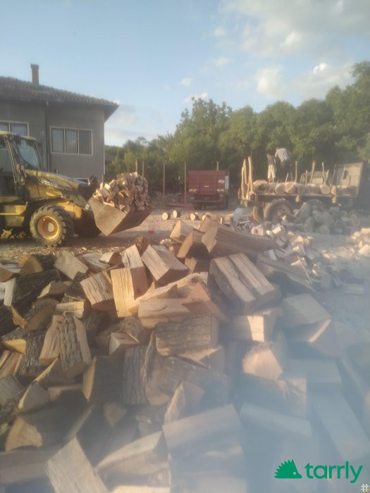 Снимка номер 1 за Дърва за огрев