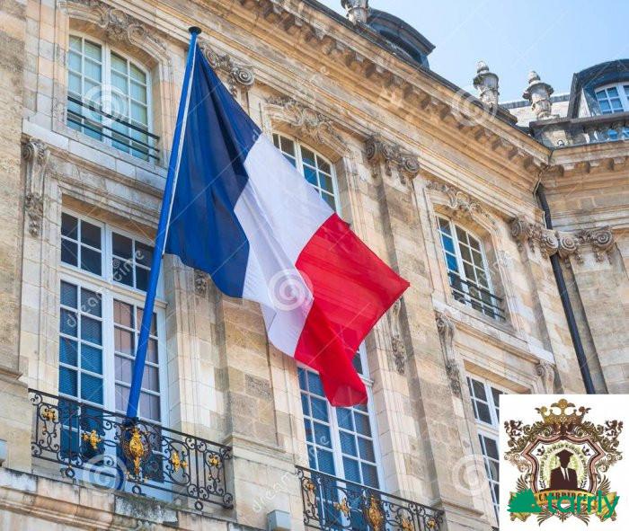 Снимка номер 1 за Подготовка по Френски Език за ДЗИ и Кандидат Студенти.